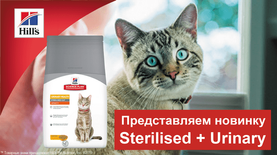 Новинка! Hill's Science Plan Urinary Health Sterilised Cat