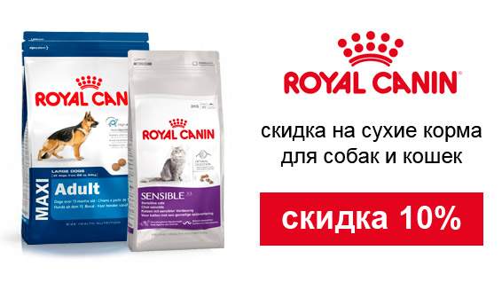 Скидка 10% на Royal Canin!