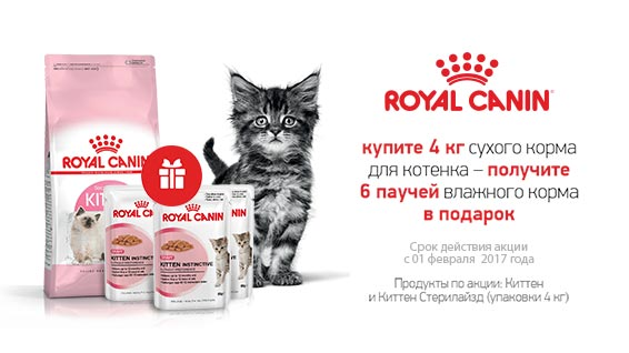 "Акция от Royal Canin для котят ""4+6"""