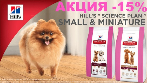 -15% на сухие корма Hill's SP Small&Miniature